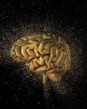 modulo 10 brain.jpg
