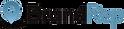 BR100_BrandRep_Logo_Horizontal_On_Light_