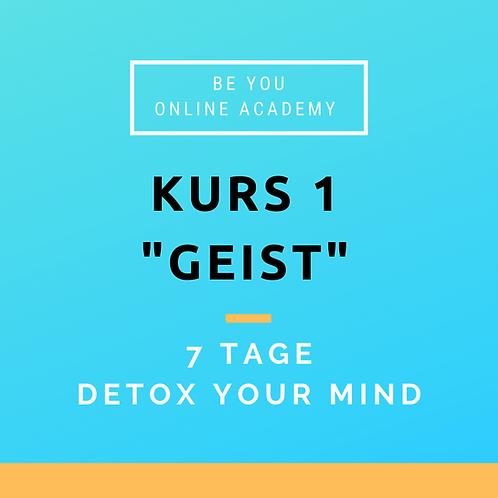 "Kurs 1 ""Geist"" | Detox your Mind"