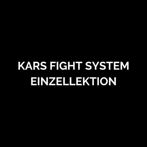 KARS Fight System Einzellektion