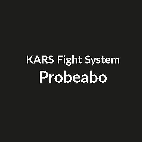 Fight System Probeabo 1 Monat