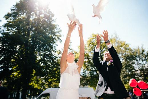 Hochzeit - Tauben