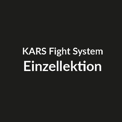 Fight System Einzellektion