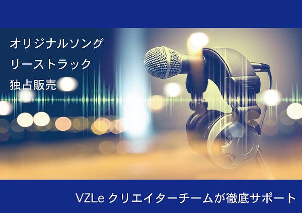 VZLeホームページ素材.jpg
