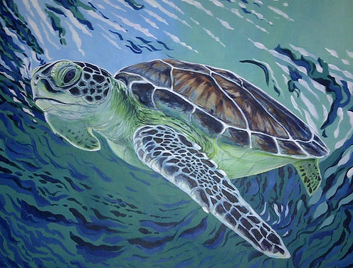 turtle, painting, oceanic swirl, pacific coast, ocean blue, cool turtle
