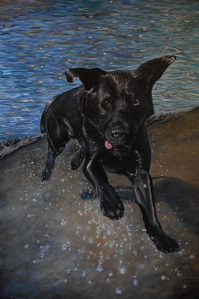 Pet Portrait Art Painting of my Black Lab Dog Bart swimming on the Flats of the Columbia River