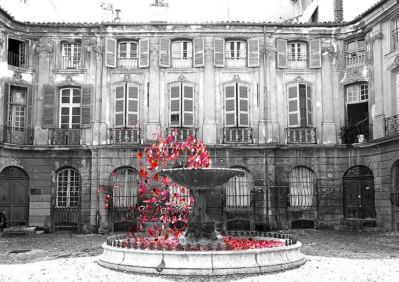 La fontaine de roses