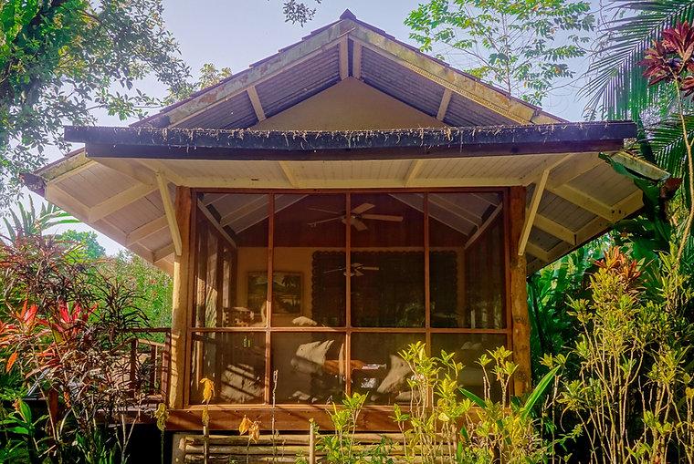 bambu3_edited.jpg