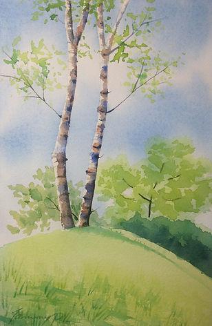 Summer birch tree-practice.jpg