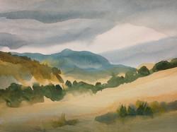 Kelowna Hills