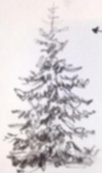Drawing Tree_edited_edited.jpg