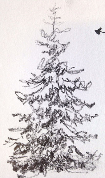 Drawing Tree_edited_edited.jpg