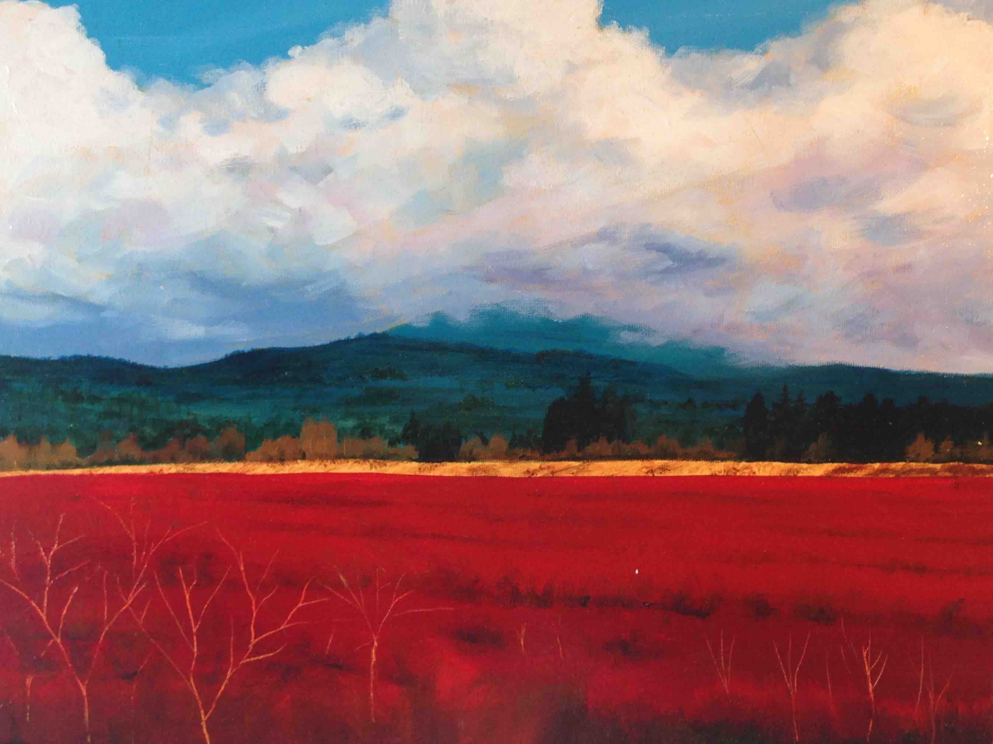 Red blueberry field-small