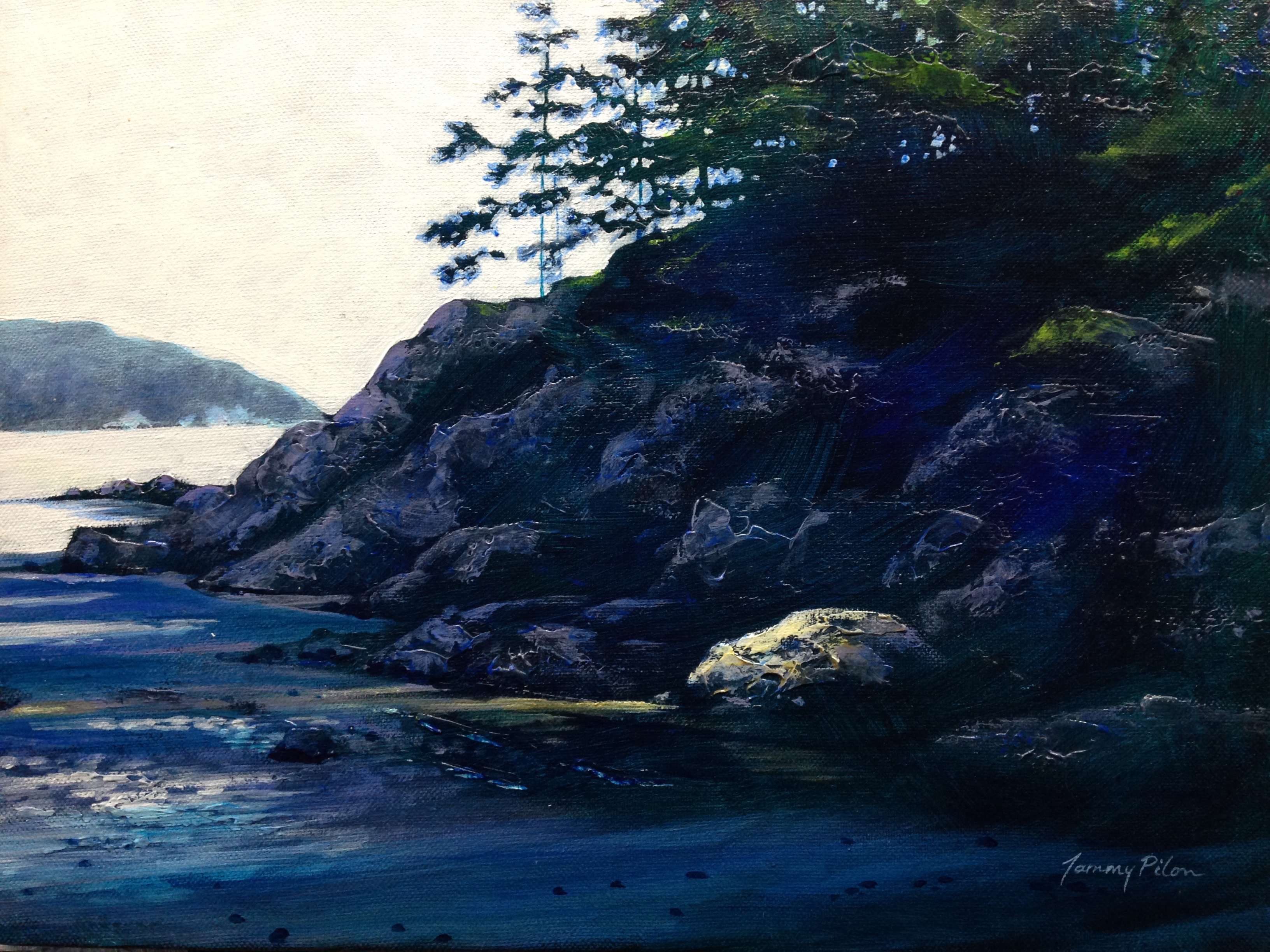 Sunlit rock on Mayne Island