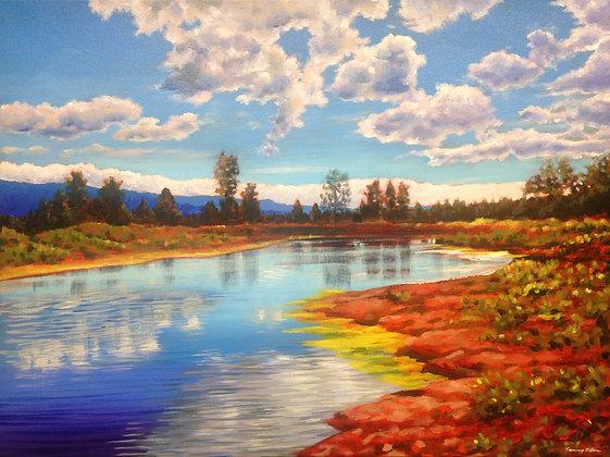 Blackburn Lagoon