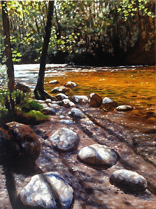 Long Shadows at the Coquitlam River
