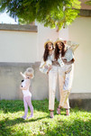 LADYGUNN-Siamese-Dream2.jpg