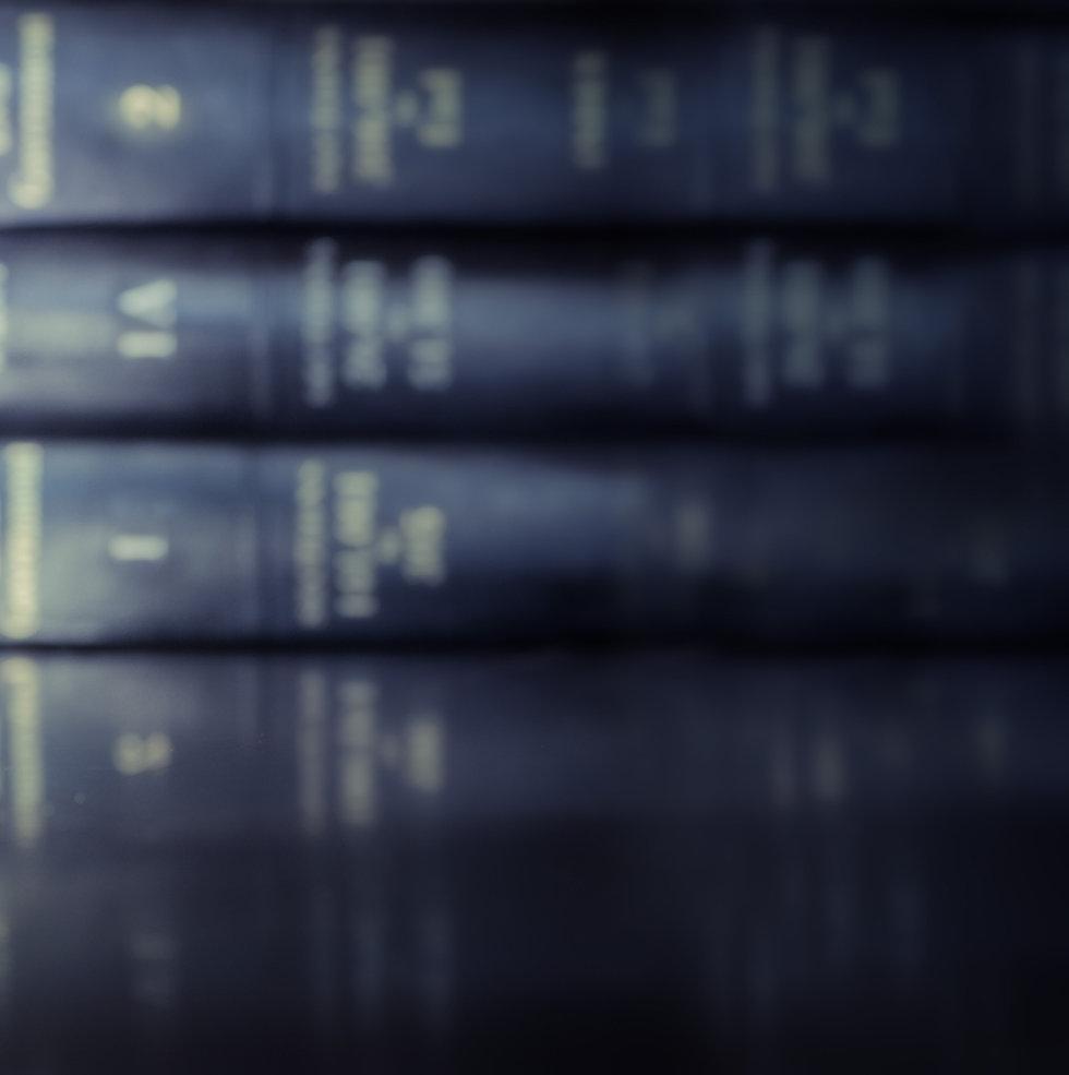 特許・法律関係の辞書