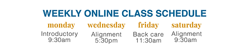 Virtual Class Schedule banner.png