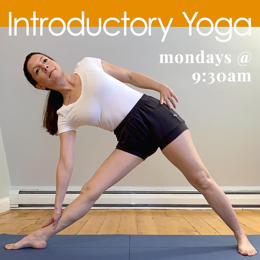 Introductory Yoga - Livestream