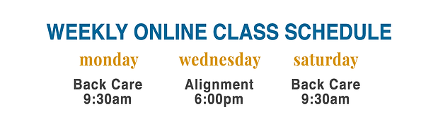 Virtual Class Schedule UPDATED 7.5.20.pn