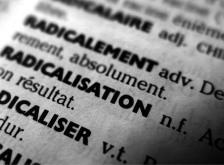 RADICALISATION : Prévenir l'isolement et la pensée radicale en milieu professionnel