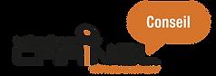 Logo CARINEL Conseil-FR.png