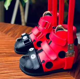 ladybag shoes
