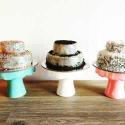 SPCA Cupcake Day 2015