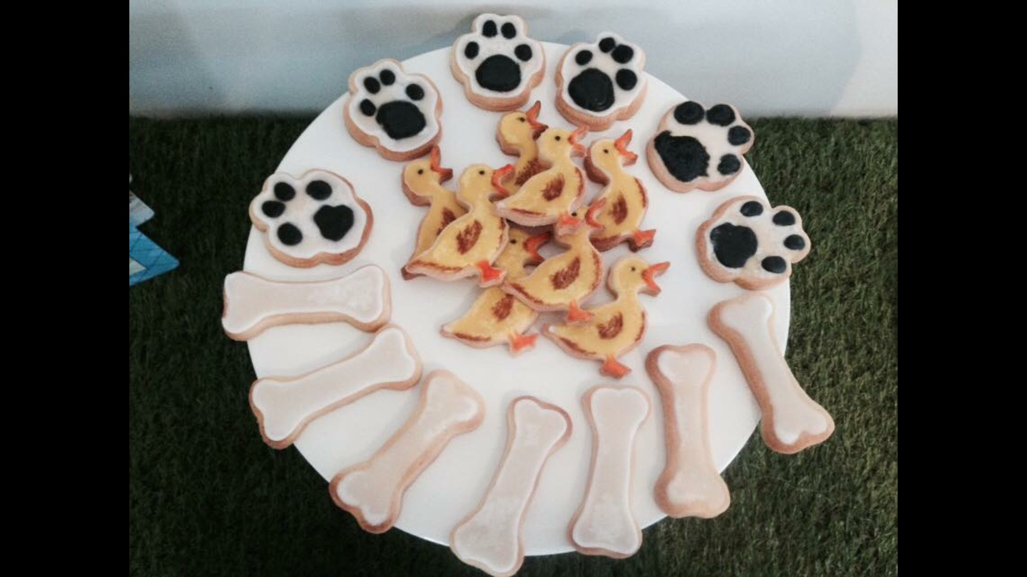 Hairy Maclary Party Biscuits
