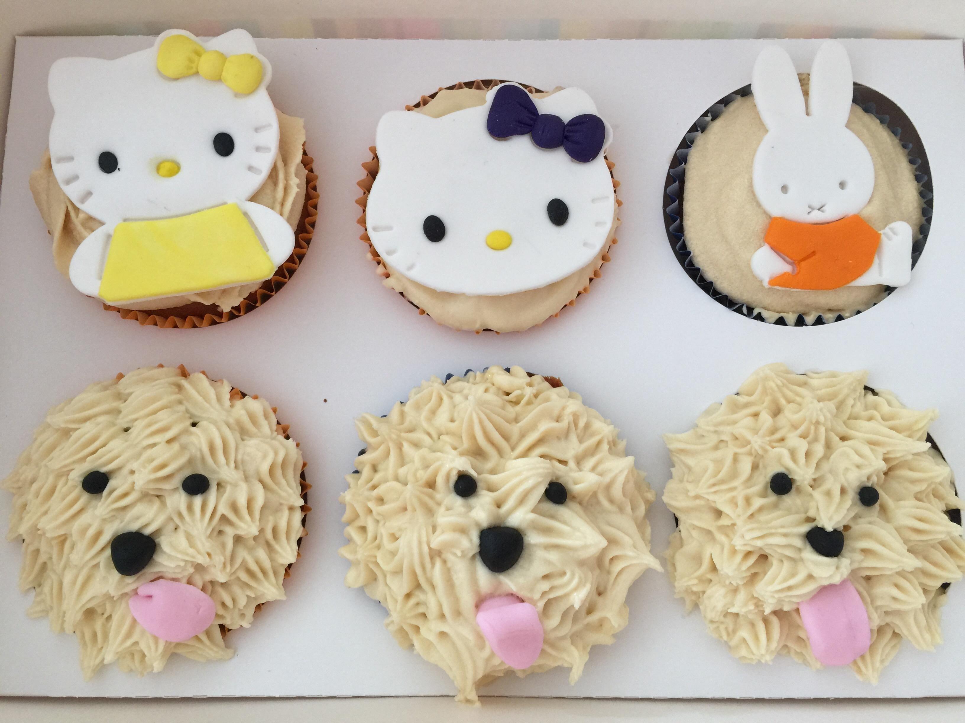 SPCA Cupcake Day
