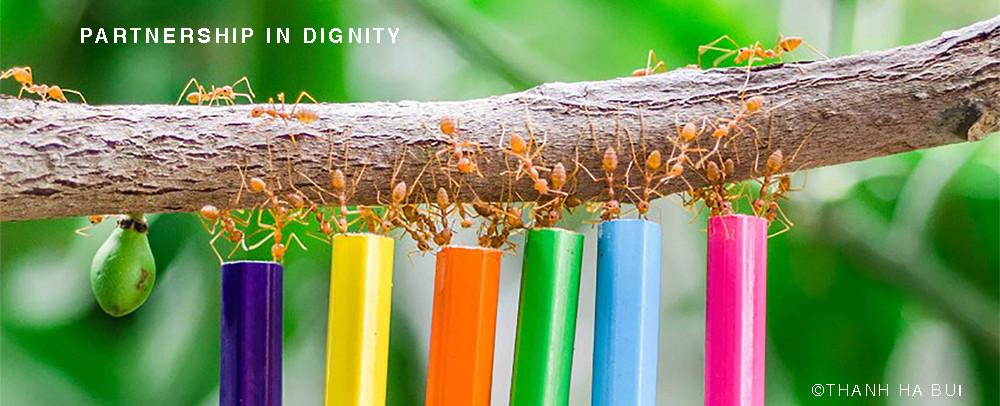 ants5.jpg