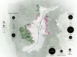 diagram_RegionalForces-01.jpg