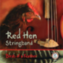 red hen stringband birds of a feather