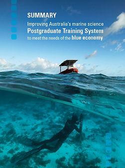 NMSC 2019 - postgrad training blue econo