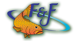 F&F Logo trans with green shadow 3.png