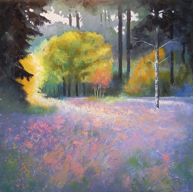 Skogseng