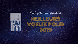 Voeux 2019.png