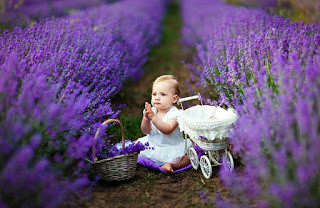 Lather Your Baby With Lavender