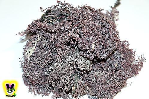 Jamaican Purple Moss