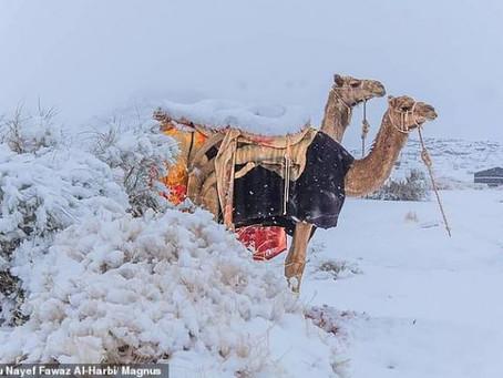 Χιόνισε στη Σαχάρα –2 βαθμούς η θερμοκρασία στη Σαουδική Αραβία