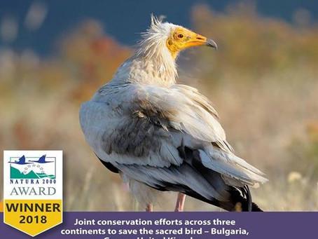 Καλλιστώ και Ελληνική Ορνιθολογική Εταιρεία οι νικητές των ευρωπαϊκών βραβείων Natura 2000 για το 20