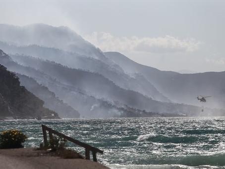Φωτιά στα Γεράνεια Όρη- Στάχτη 40.000 στρ. δάσους