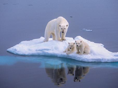 Καταστροφικές οι συνέπειες της κλιματικής αλλαγής, ελάχιστη η απήχηση των παγκόσμιων ηγετών