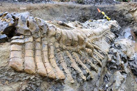 Το «μεγάλο θανατικό», πριν 252 εκ. χρόνια, οφειλόταν στην κλιματική αλλαγή