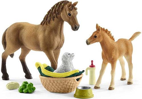 Schleich Horse Club Sarah's Baby Animal Care
