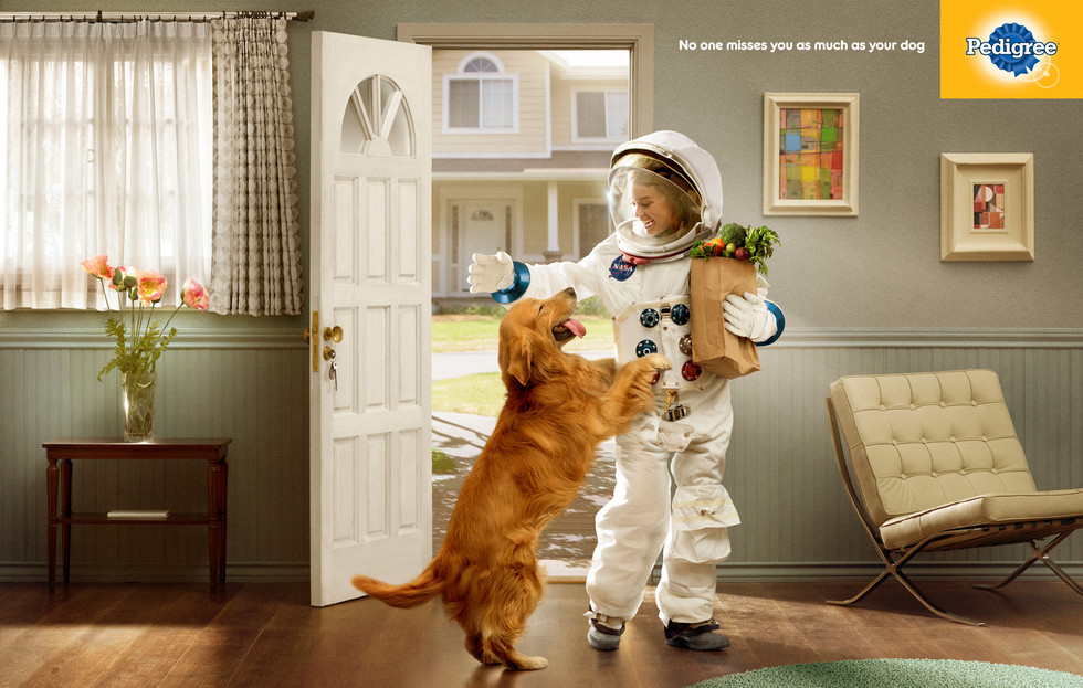 Pedigree - Astronaut