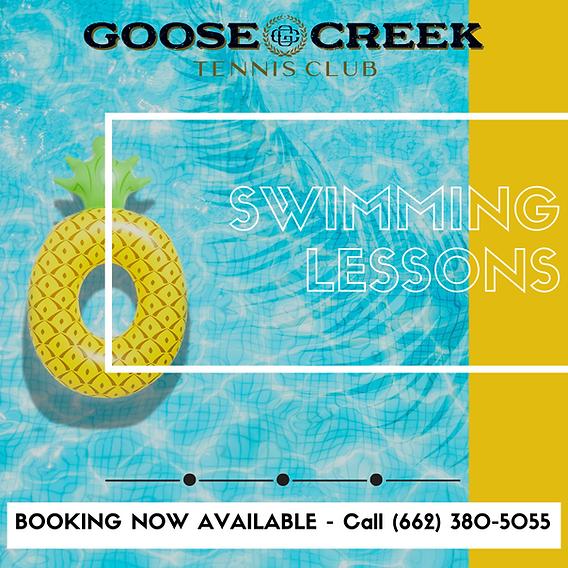 Swim Lesson Graphics.png