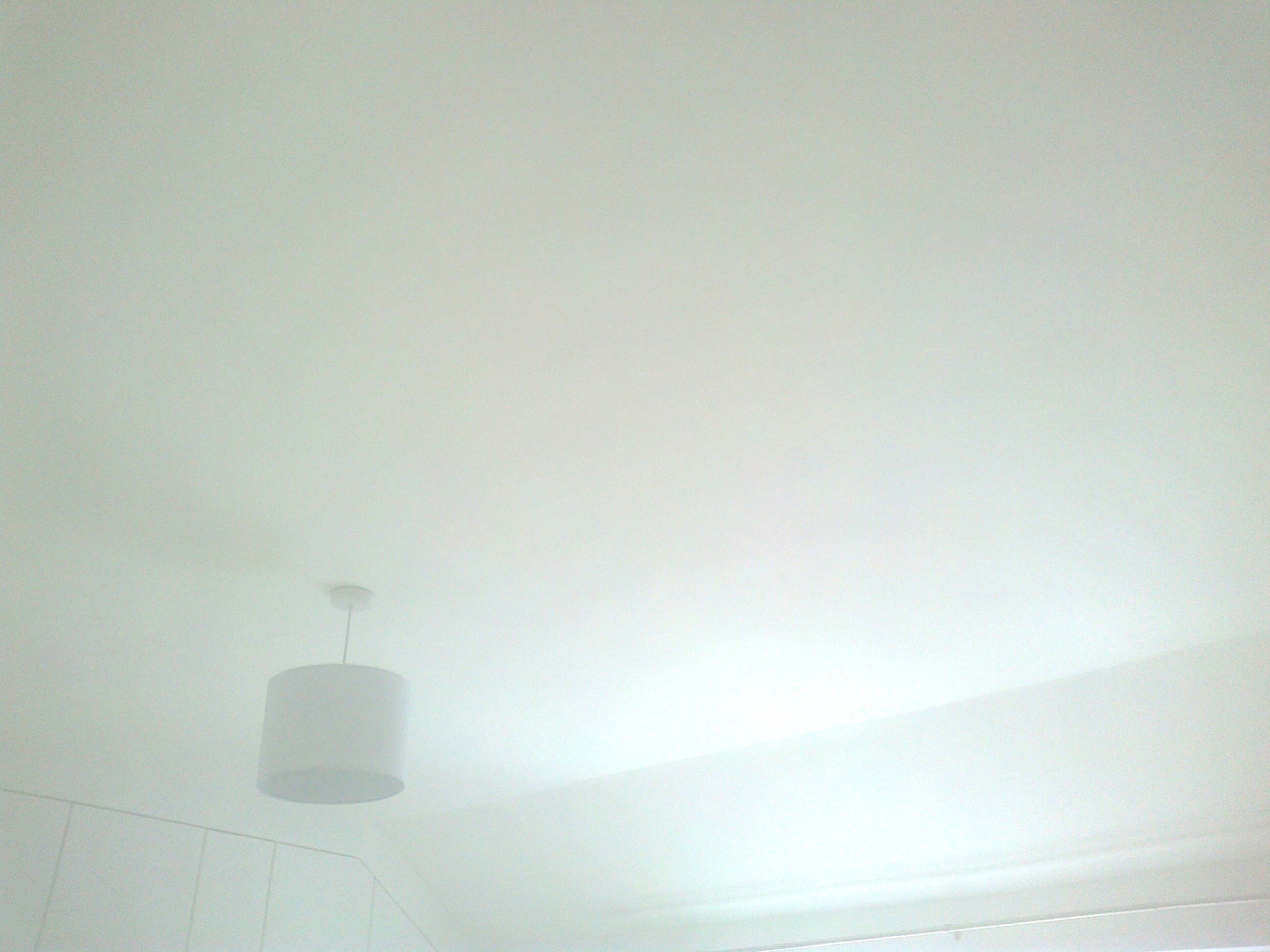 Vaulted ceiling skimmed