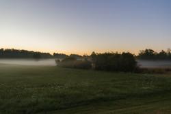 Silo Fog Rise